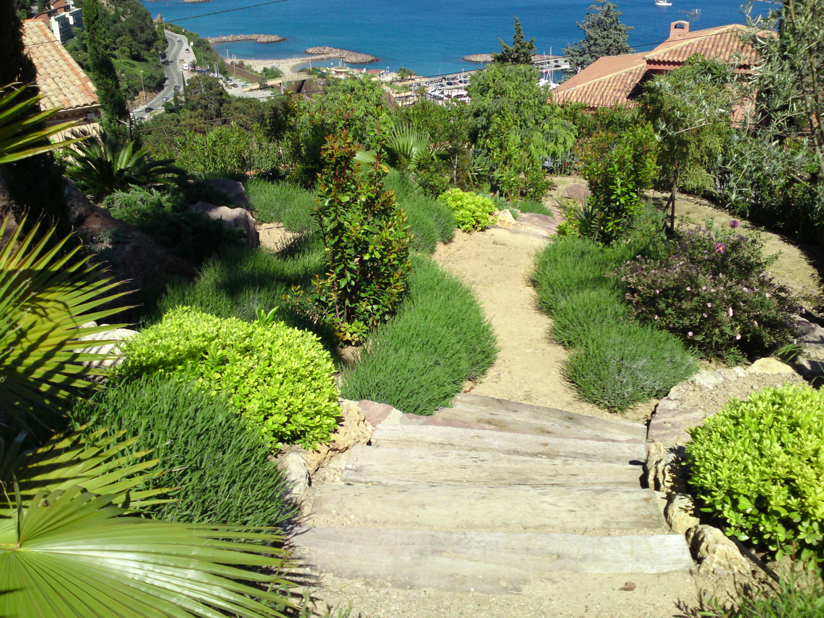 Planete jardin philippe labouyrie landscaping and for Jardin nice
